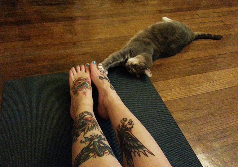 pilatescat
